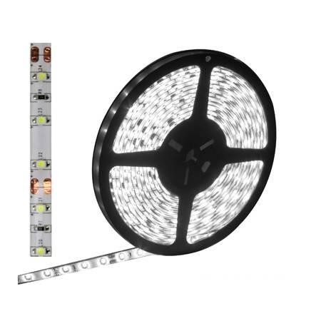 Tira LED Impermeable 12V 60 LED/4.8W x Metro - Blanco (5m)