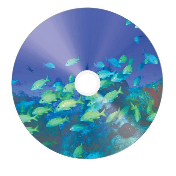 CD-R 52x FF Printable Verbatim Pro. Silver 50 uds (no ID)
