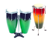 Categorï¿Ã­a Mini congas