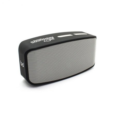 Altavoz Bluetooth Biwond SoundPlay Wild Plata